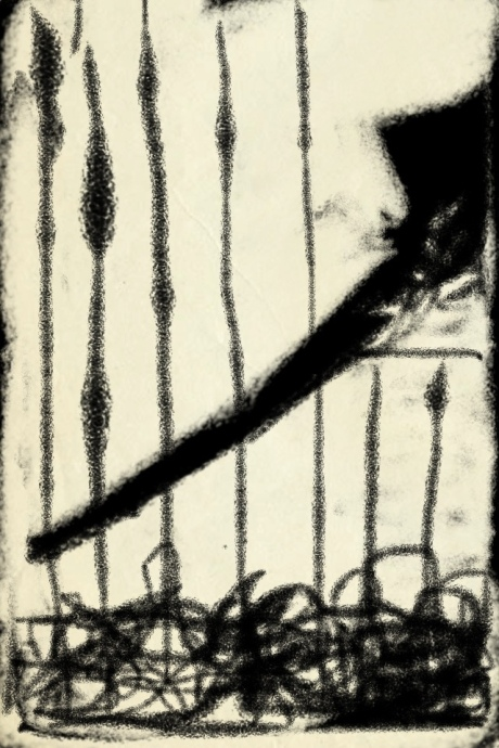 20121213-133424.jpg