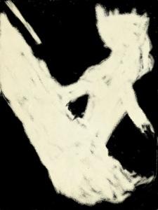 20130121-071752.jpg