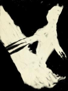 20130121-071806.jpg